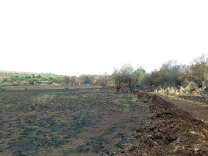 After a big fire in November 2015 the site looks like a different planet. A very depressing one at that